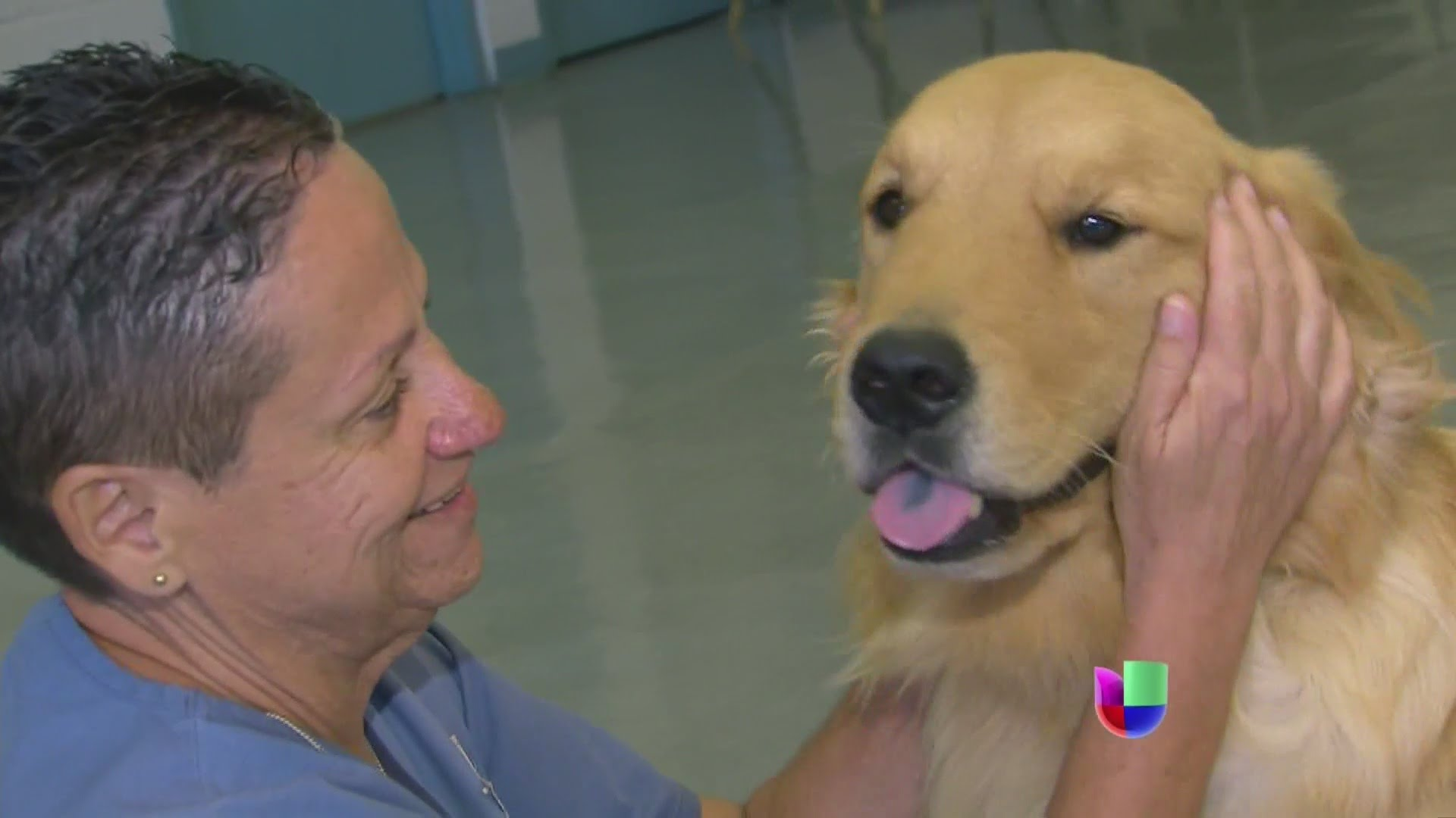 Le han cambiado el sentido a la vida de muchos: perros en la prisión